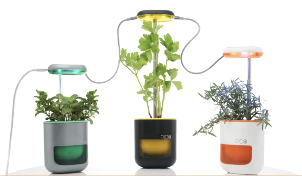 Pico The Mini Indoor Garden That Can Grow Herbs And Tomatoes Busts Through Kickstarter Goal